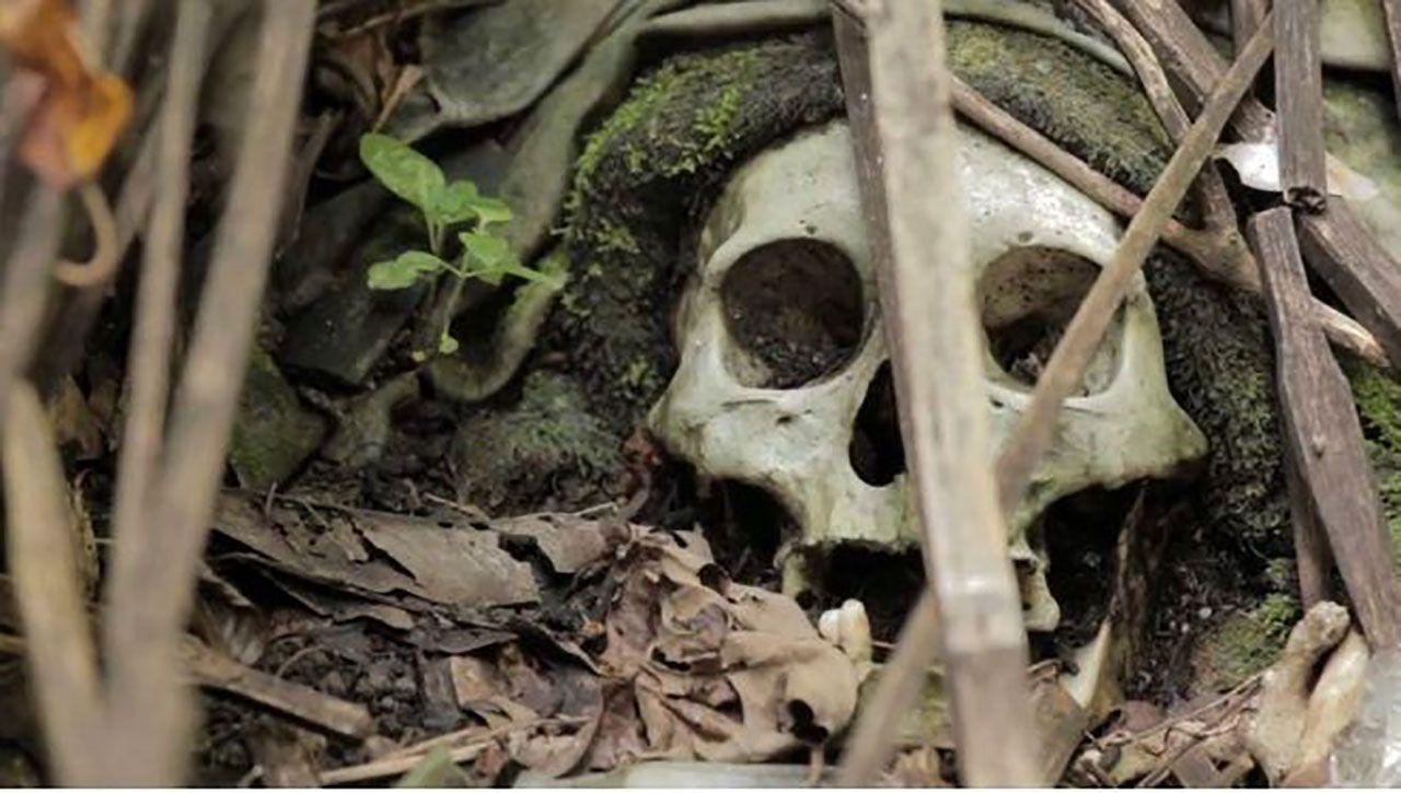 Ünlü sunucunun bahçesinde insan iskeleti bulundu - Sayfa:4