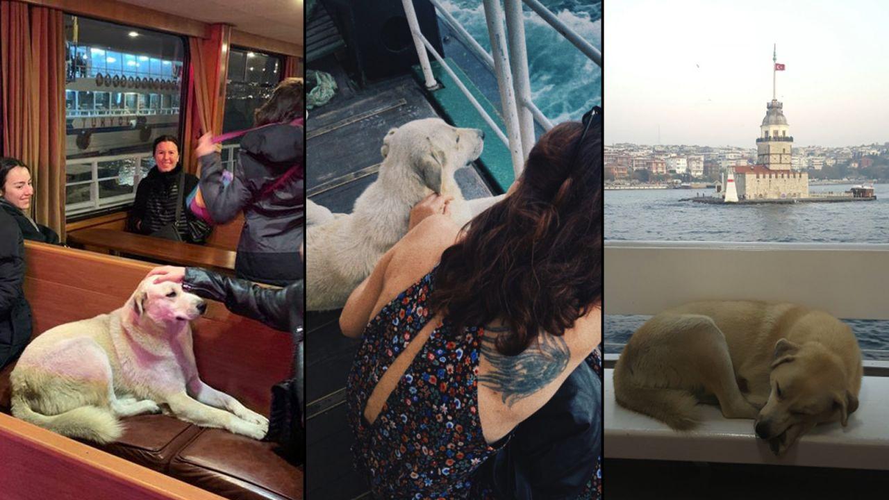 Beşiktaş vapurunun kadrolu yolcusu sosyal medyanın gündeminde - Sayfa:1
