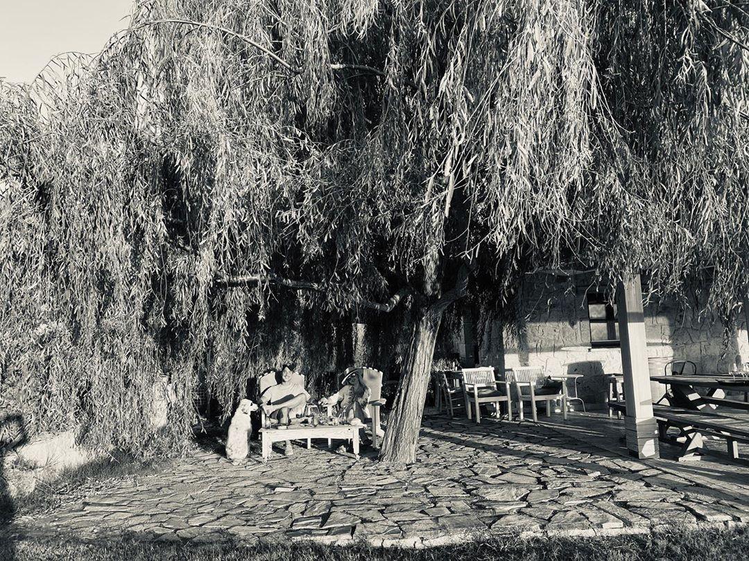 Hadise ve Kaan Yıldırım aşkından ilk fotoğraflar - Sayfa:2