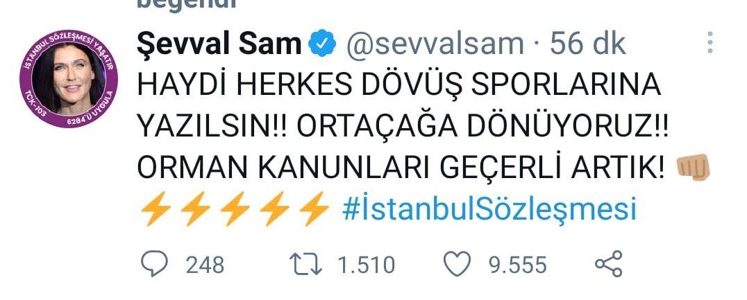 Ünlü isimlerden İstanbul Sözleşmesi isyanı! - Sayfa:4
