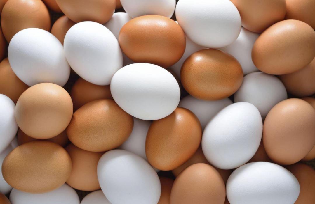 Yumurtadaki tehlike ortaya çıktı, milyonlarca insan habersiz! Yumurta üzerinde neden üretim-tüketim tarihi yok? Bayat yumurta nasıl anlaşılır? Taze yumurta nasıl olur? - Sayfa:1