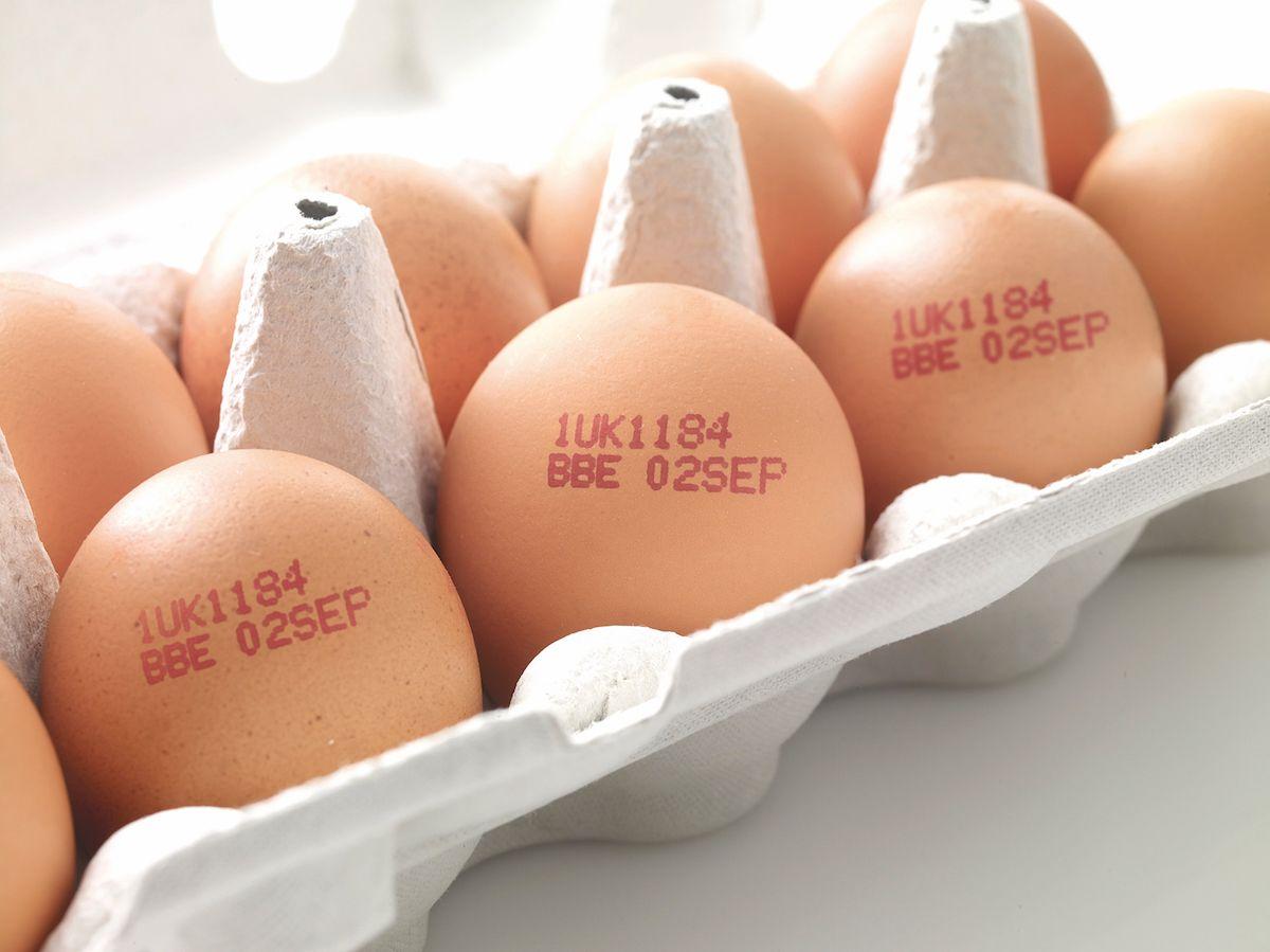 Yumurtadaki tehlike ortaya çıktı, milyonlarca insan habersiz! Yumurta üzerinde neden üretim-tüketim tarihi yok? Bayat yumurta nasıl anlaşılır? Taze yumurta nasıl olur? - Sayfa:3