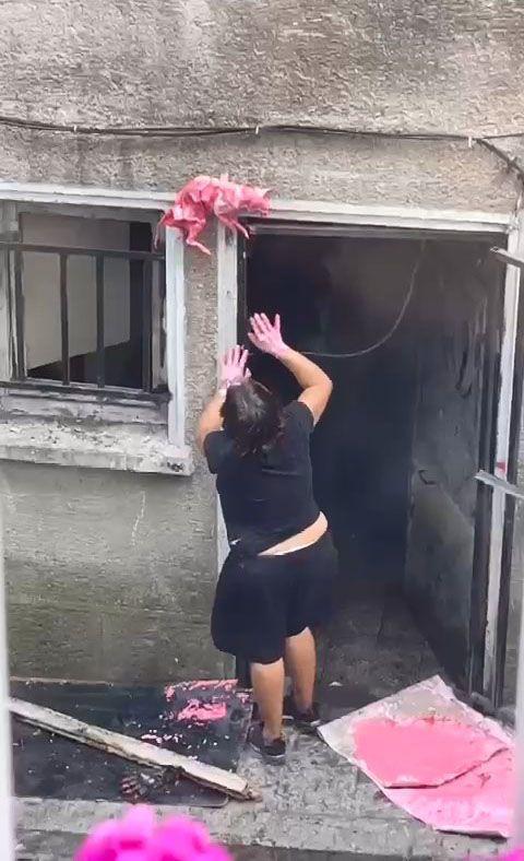 Şişli'de korkunç görüntüler, mahalleli şoka girdi. Yaşlı kadın evin penceresine ölü kedileri astı - Sayfa:1