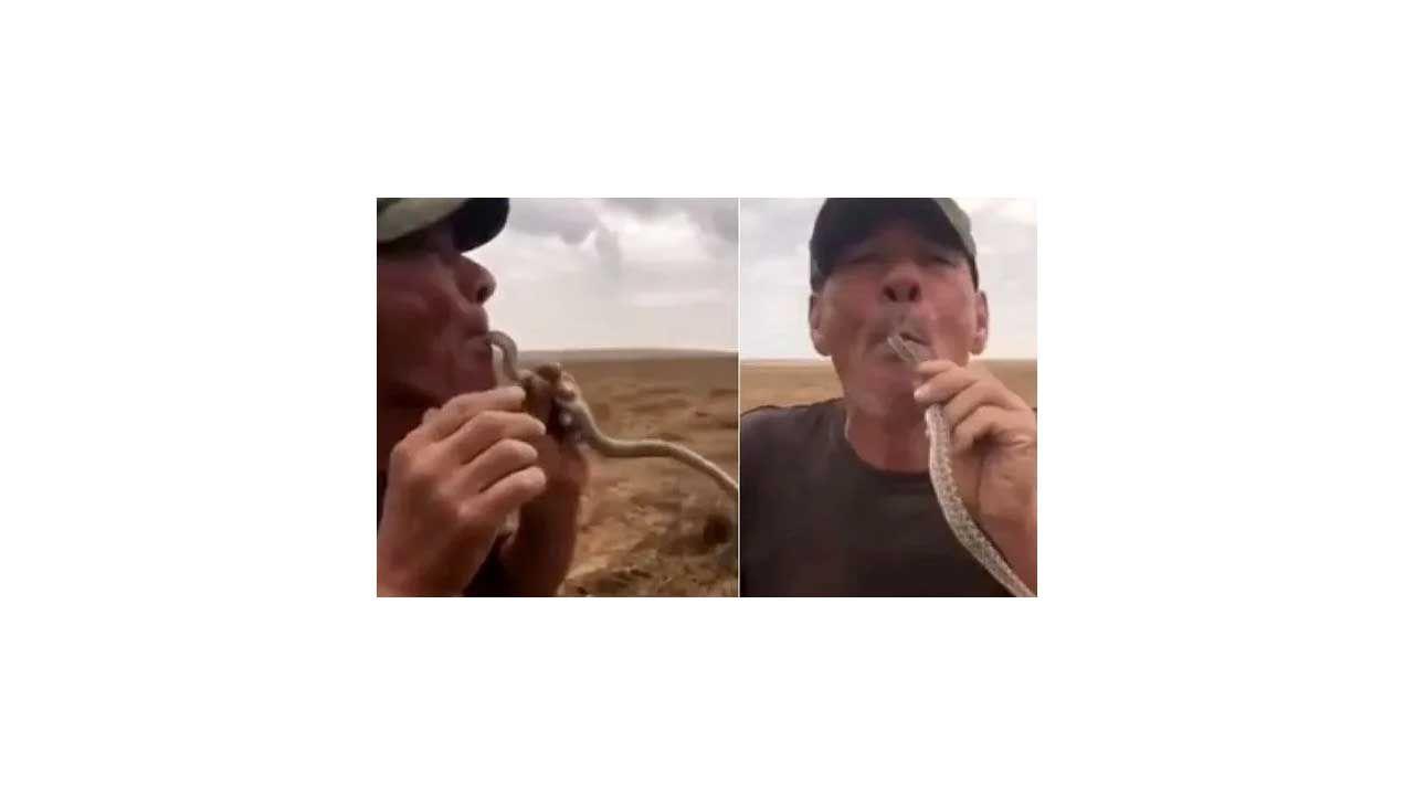 Çiftçinin yılanla tehlikeli gösterisi sonu oldu! - Sayfa:1