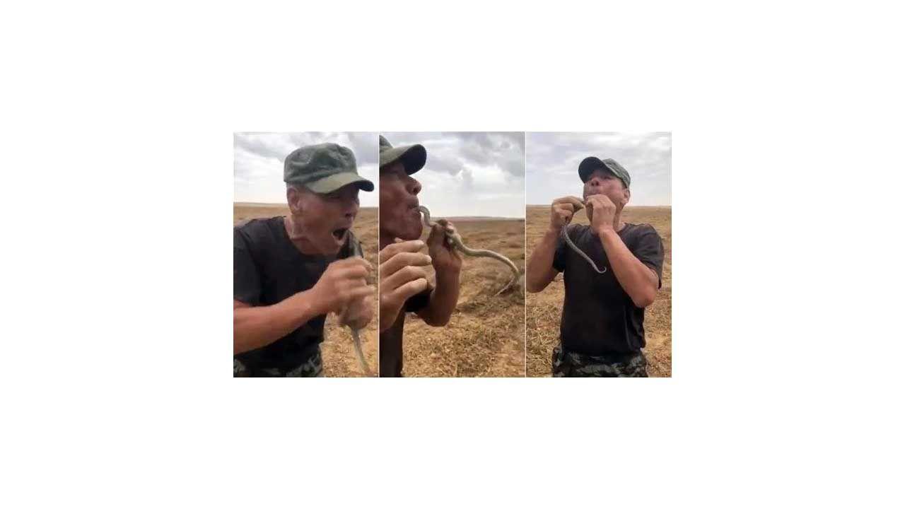 Çiftçinin yılanla tehlikeli gösterisi sonu oldu! - Sayfa:2