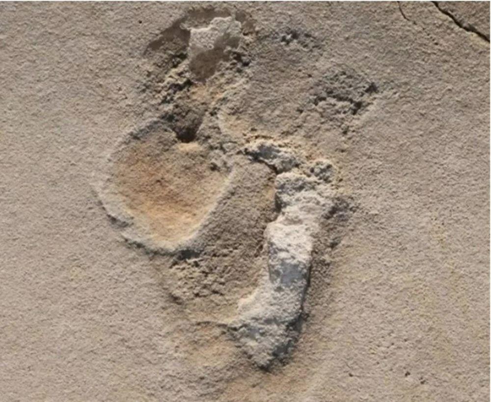 Bilim insanları, insanlığa ait bilinen en eski ayak izlerini bulduklarını açıkladı. 6 milyon öncesine ait ayak izleri bulundu! - Sayfa:1
