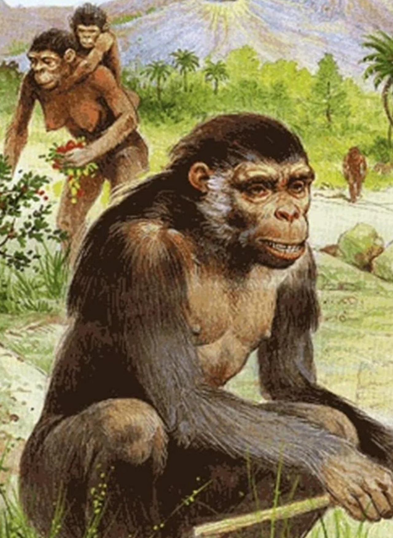 Bilim insanları, insanlığa ait bilinen en eski ayak izlerini bulduklarını açıkladı. 6 milyon öncesine ait ayak izleri bulundu! - Sayfa:4